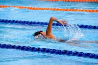 progettazione piscine lido di verona